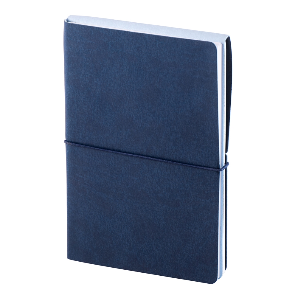 Notes Switch albastru cu bleu